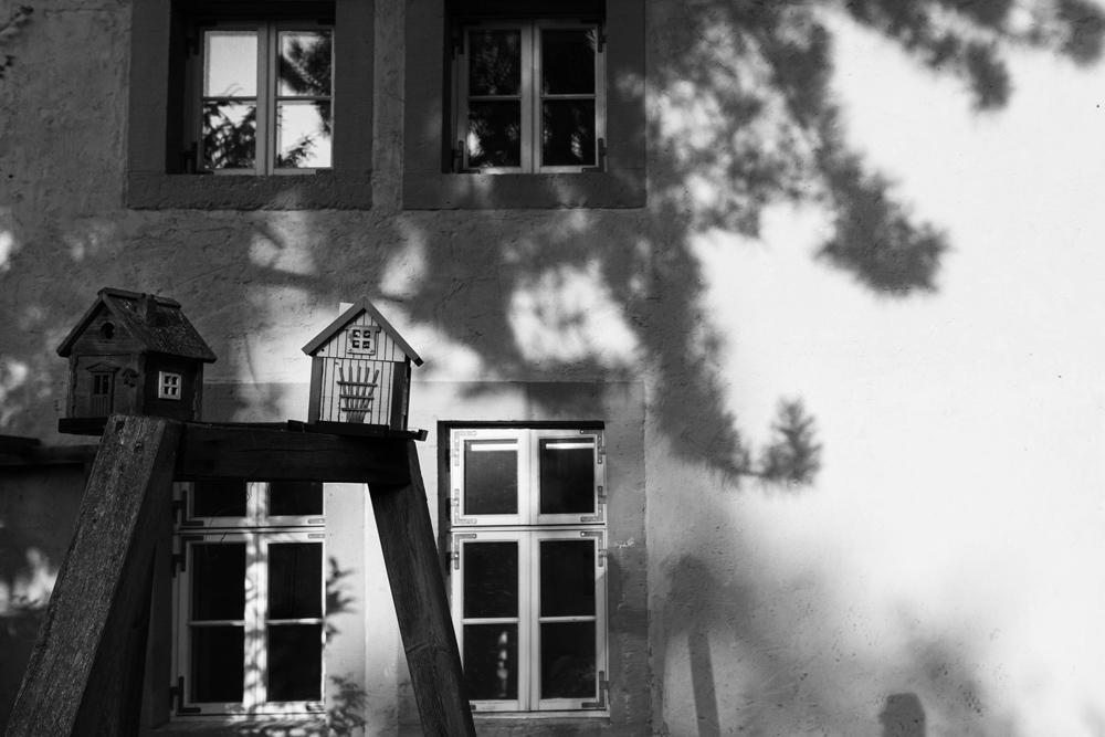 Dom Vogelhaus
